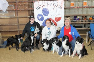 Our Clan   Millie, Rookie, Cathy & Kona, Violet, Courtney, Tank, Zack, Wyatt & Me